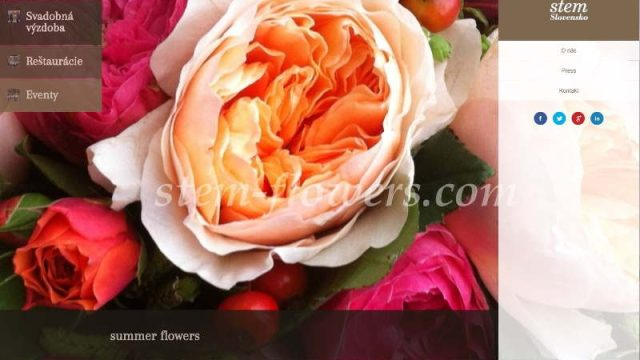 stem-flowers.com